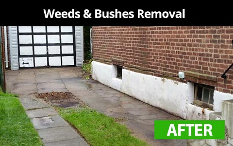 Weeds and bushes removal services in New York City - after photo