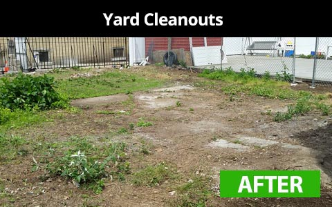 Yard cleanouts services in New York City - after photo